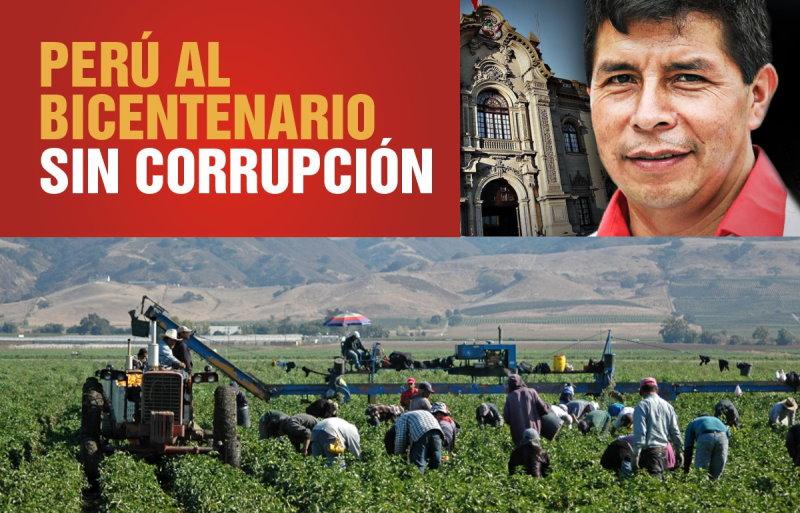 Los vac�os del plan de gobierno de Pedro Castillo, la segunda reforma agraria